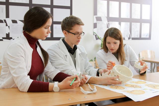 Изучение анатомии по 3D-моделям